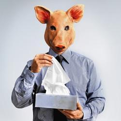 Met varkensgriep naar het werk?