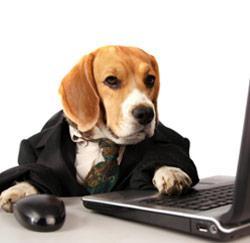 Een hond op kantoor