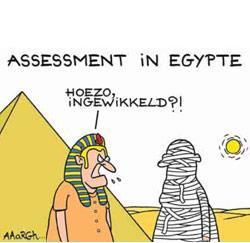 Assessment cartoon Aaargh