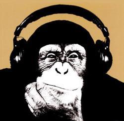 aap met koptelefoon