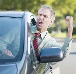 boze chauffeur