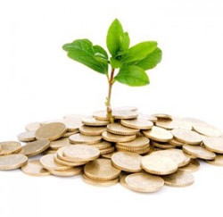 groei geld