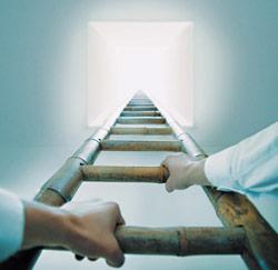 In 5 stappen naar succes