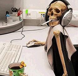 skelet bureau