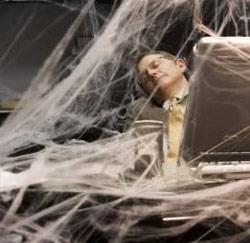 spinnenweb laptop