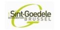 Vzw Sint-Goedele Brussel
