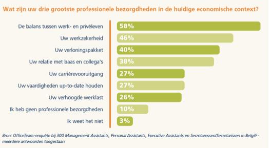 Grafiek: Wat zijn uw drie grootste professionele bezorgdheden in de huidige economische context?