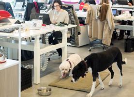 Sarah Streicker en hond Pearlie