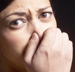 Geuren hebben een grote invloed op ons, zeker ook op het werk. Sommige ...: www.jobat.be/nl/artikels/welke-geuren-kan-je-best-vermijden-op-je...